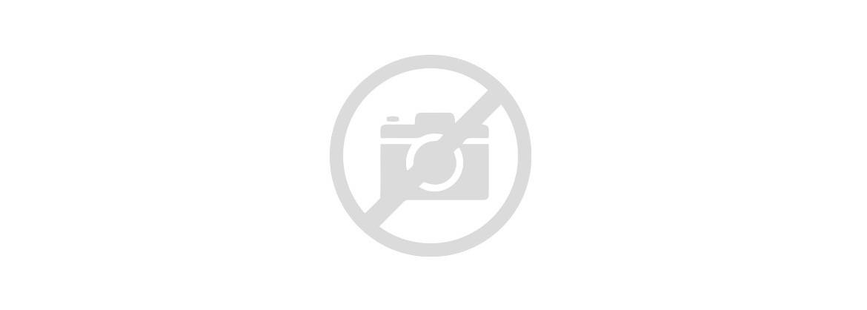 Czujnik światła - Fotoelement
